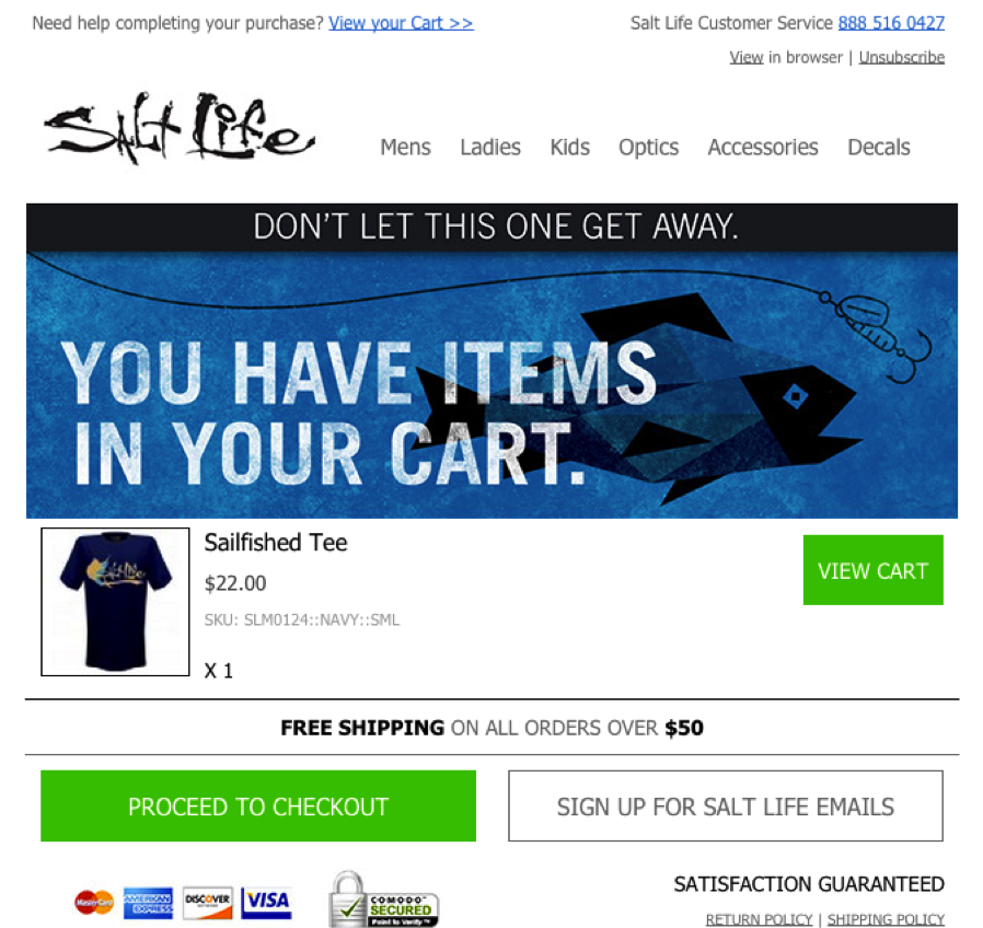salt-life-retargeting-cart